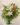 whitegreenclassic1